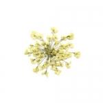 Сухоцветы в пакете Салютики белые (4038)