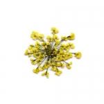 Сухоцветы в пакете Салютики желтые (4039)