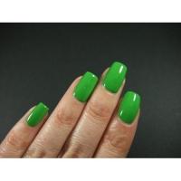 SHELLAK PANTERA 169  Ярко зеленый травяной   плотный, матовый.