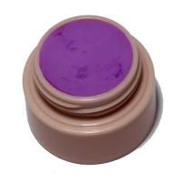 Гель 4д Plastiline Pantera 5 мл №14 Темно-фиолетовый